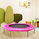 Awlstar Fitness Trampoline Mini Trampoline with Safety Padding , Stable & Quiet Exercise Trampoline for Indoor and Outdoor