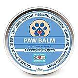 Pawtitas Balsamo para Perro con Cera Protectora para Almohadillas de Las Patas de tu Perro   Crema humectante para Las Almohadillas de tu Mascota Que Protege Las Patas agrietadas y secas - 52 ml