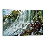 ASHDJ Iguazu Falls Poster dekorative Malerei Leinwand