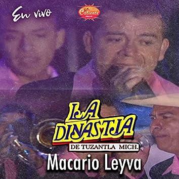 Macario Leyva (En Vivo)