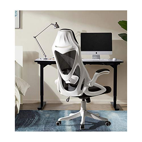 TKEY High Back Office Chair, Mesh Desk Chair with Foldable Armrests and Adjustable Lumbar Support, Ergonomic Swivel Computer Chair, Executive Chair (White)