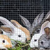 YYFANG Rollo De Cerca De Alambre,Barrera Protectora De Jardín Cerca De Aislamiento De Alambre De Púas Conejo Mascota para Correr Nido En Aves De Corral Y Aviario (Color : Silver-1mm, Size : 1x17m)