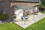 De aluminio de gran calidad prikker-überdachungen/Veranda–300x 300(BXT)/überdachung Palram Feria gris