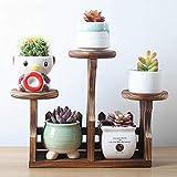 Pflanzenständer Massivholz Sukkulenten Desktop Mini-Blumenregal Indoor- und Outdoor-Wohnzimmer Balkon Mini-Büropflanzen Blumentopf Rack Multi-Tier-Blumenregal, E-S