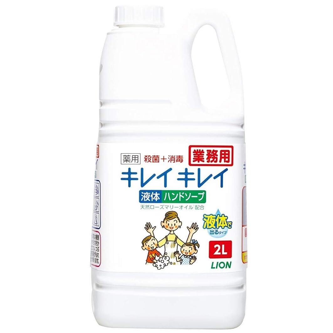 許容アルコーブ荒らす【業務用 大容量】キレイキレイ 薬用 ハンドソープ 2L(医薬部外品)