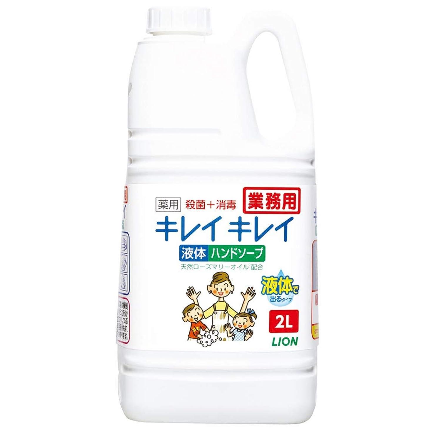 マーキング本質的ではない参照する【業務用 大容量】キレイキレイ 薬用 ハンドソープ 2L(医薬部外品)