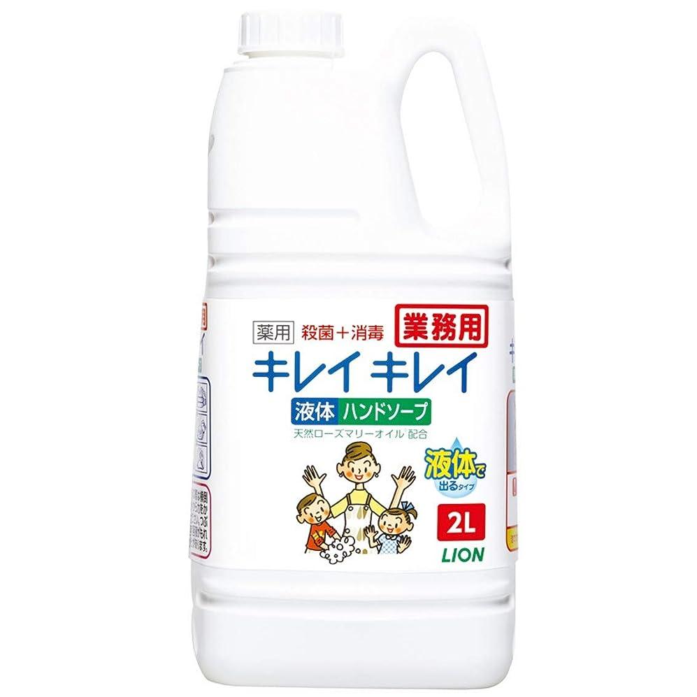 退屈させる狐人事【業務用 大容量】キレイキレイ 薬用 ハンドソープ 2L(医薬部外品)
