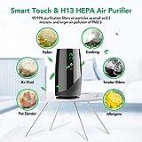 Purificateur d Air Ionique Portable avec Filtre HEPA à Charbon Actif avec Indicateur de Température et d Humidité sans Ozone, 2 Vitesses Elimine 99,97% de Fumée Poussière Allergènes Acekool D01