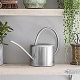 CKB LTD® Arrosoir d'intérieur en acier galvanisé 1,9 l - Pour plantes d'intérieur - Design contemporain en métal avec bec étroit et poignée haute (argent)