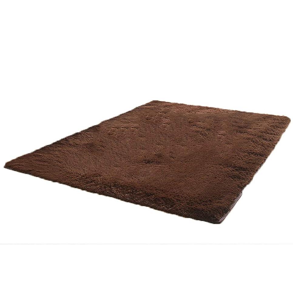 落ちたジョイント砂のカーペットのコーヒーテーブルの毛布の正方形のレイアウトの寝室の居間の豪華な厚さは多色のために適した任意 (Color : Brown, Size : 250x200cm)