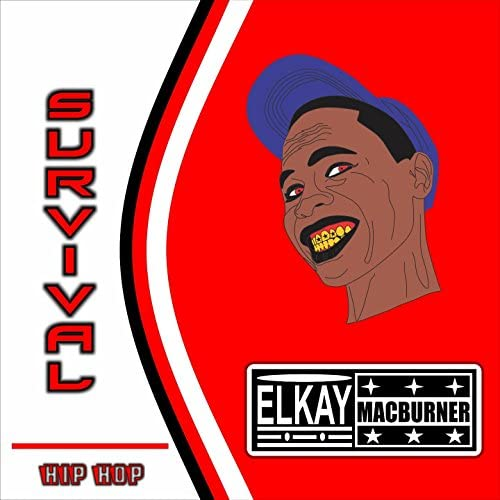 Elkay Macburner