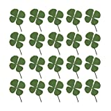 Artibetter 24pcs Natural Pressed Dried Flowers Four-Leaf Clover Leaf Plant for DIY Resin Jewelry Making Art Craft