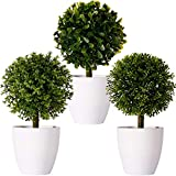 FagusHome 8' Artificial Plants Potted Artificial Boxwood Topiary Tree Artificial Ball Shaped Tree Fake Fresh Green Grass Flower in White Plastic Pot for Home Décor – Set of 3 (F)