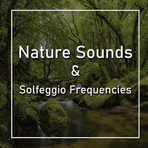 Nature Sounds & Spiritual Moment