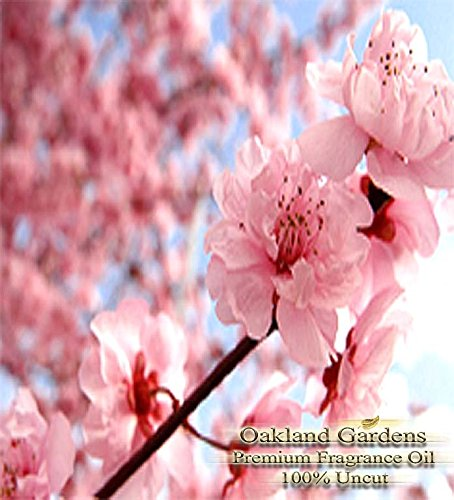 JAPANESE CHERRY BLOSSOM Fragrance Oil - 100% Pure Premium Grade Oil - Tender cherry blossom, sensual white lily and blushing violet petals blended with a hint of warm vanilla - BULK Frangrance Oil By Oakland Gardens (030 mL - 1.0 fl oz Bottle)
