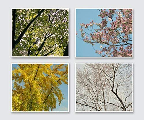 Amazon Com Four Season Photography Nature Wall Decor Set Of 4 Prints Spring Summer Autumn Winter Pictures 5x7 8x10 11x14 12x16 16x20 25 Off Discount Handmade