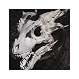 2021 New Dragon Mask, Movable Dragon/movable Jaw Dino Mask Moving Jaw Decor, Halloween Simulation Dragon Bone Mask, Dragon-bone Mask Head Set Dinosaur Latex Animals Moving Pacifier Mask