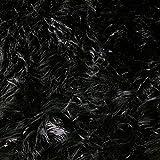 FabricLA Shaggy Faux Fur Fabric | 60' X 36' Inches | DIY Craft, Hobby, Costume, Decoration | Black - 1 Yard