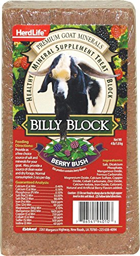 Evolved Habitats 94010 Billy Goat Mineral Supplement Treat Block - Berry Bush - 4 lbs.