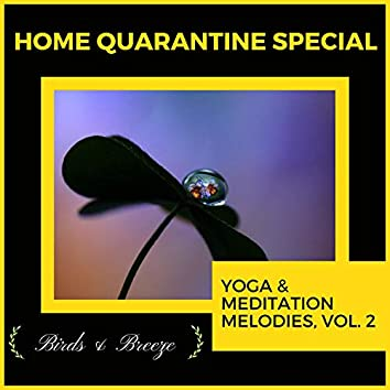 Home Quarantine Special - Yoga & Meditation Melodies, Vol. 2