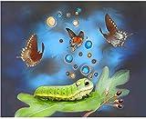 Kits de pintura de diamantes 5D para adultos y niños DIY 5D pintura de diamantes mariposa gusano de seda bordado de diamantes de imitación punto de cruz 30x40cm