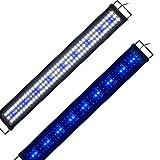 Lumiereholic Aquarium Beleuchtung Fisch Tank Aufsetzleuchte Blau Weiß LED Lampe Leuchte 90-115cm 33W