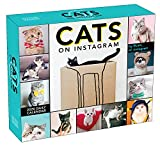 Cats on Instagram 2020 Day-to-Day Desk Calendar