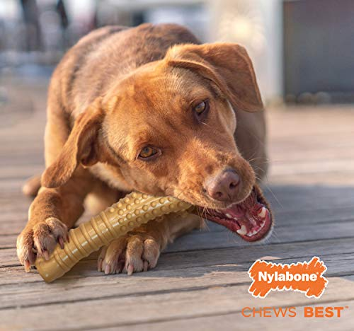 Nylabone Dura Chew Textured Toy, X-Large - Peanut Butter Flavored Bone ( Standard Packaging )