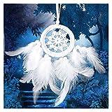Hecho a Mano Dream Catchers Colgando Blanco Encaje Flor Dreamcatcher Viento Chimes Indiana Plaza Colgante Coche Decoración Decoration (Color : 07)