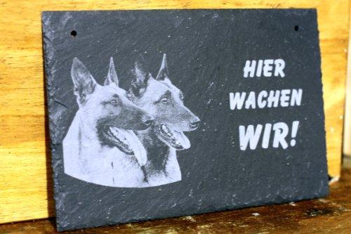 Schiefertafel Hier wache ich / wir - Malinois Belgischer Schäferhund Foto- Gravur Türschild Schild