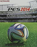 Pro Evolution Soccer 2014 World Chall. Ed [Importación Italiana]