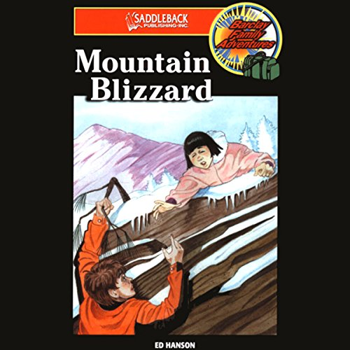 Mountain Blizzard audiobook cover art