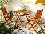 SEDEX Balkon-Set Gartenmöbel Gartenset - 1 Klapptisch + 2 Klappstühle Balkonset - Modell Linus - NEU