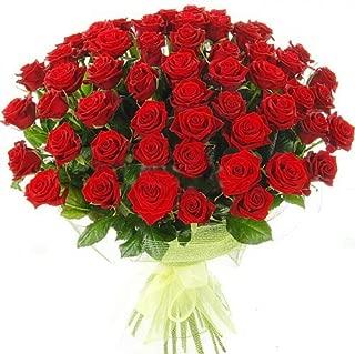 Fresh Red Roses | 50 cm. long (20