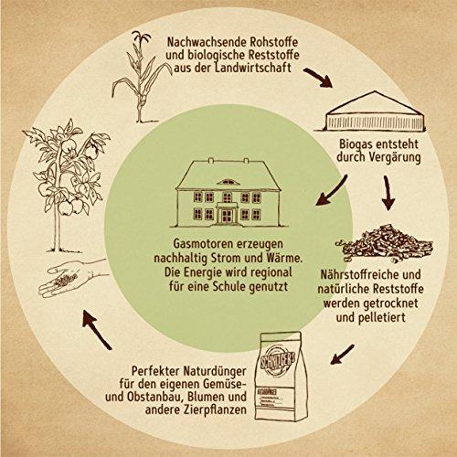 Naturdünger - Universal Pflanzendünger in Bio-Qualität - Langzeitdünger für gesunde Pflanzen und Blumen - Dünger von SCHNITGER's (10kg) - 3