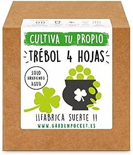 Amazon.es: Envío gratis - Huertos urbanos y kits / Huertos urbanos ...