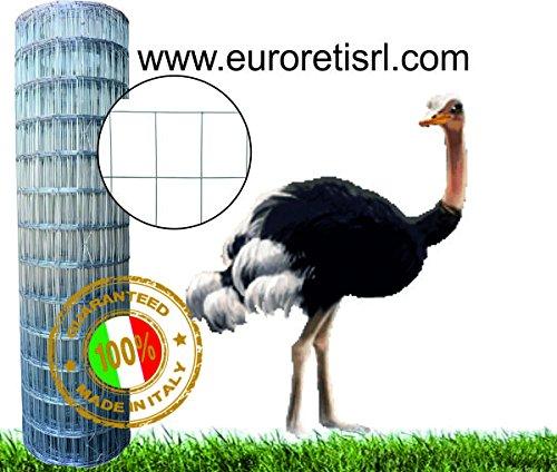 Rete Recinzione Elettrosaldata Zincata Margherita 50X75 mm H:100 cm Rotolo 25 mt