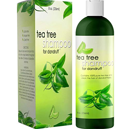 Tea Tree Shampoo for Oily Hair - Sulfate Free Pure Tea Tree Oil Shampoo for Oily Scalp Care and Natural Clarifying Shampoo for Build Up - Cleansing Oily Hair Shampoo with Tea Tree Oil for Hair Care