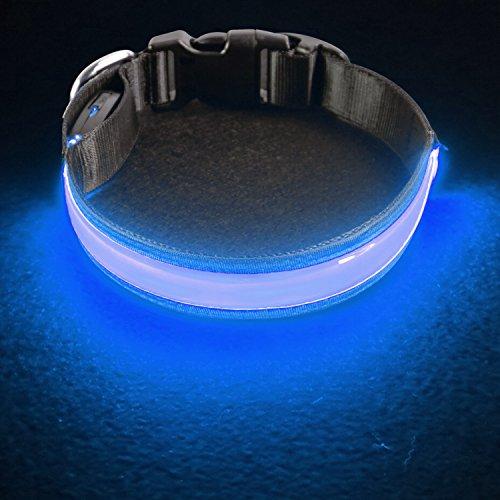 PetIsay LED Collar para Perros, Super Brillante con luz LED Recargable por USB, Collar de Perro Iluminado para Seguridad Nocturna, Resistente al Agua, tamaños Ajustables(Azul Real,L(50-60cm))