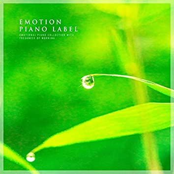 Emotional Piano Collection With Freshness Of Morning