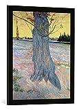 Kunst für Alle '–Fotografía enmarcada de Vincent Van Gogh El árbol, Arlés, de impresión handgefert...