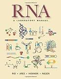Rio, D: RNA - Donald C. Rio