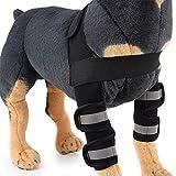 fushida Pet Elbow Brace, Dog Hock Joint Brace Used for Sprains, Dog Leg Brace Rehabilitation Sleeve, Hind Leg Support for Arthritis, Stability After Injury 2 Pack/Set, Black, M
