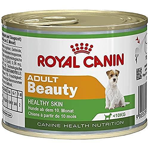 ROYAL CANIN Mini Adultes Beauté Nourriture pour Chien 195 g