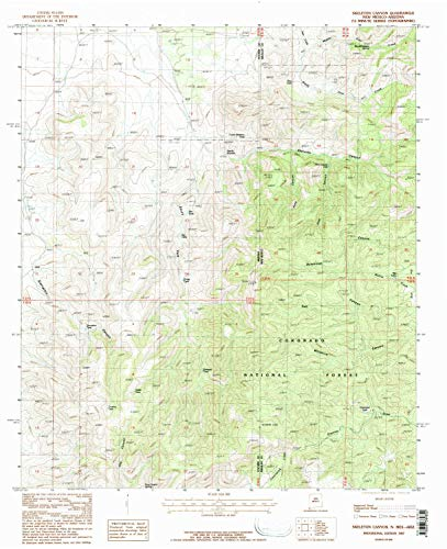 YellowMaps Skeleton Canyon NM topo map, 1:24000 Scale, 7.5 X 7.5 Minute, Historical, 1987, Updated 1987, 27.1 x 22 in - Tyvek