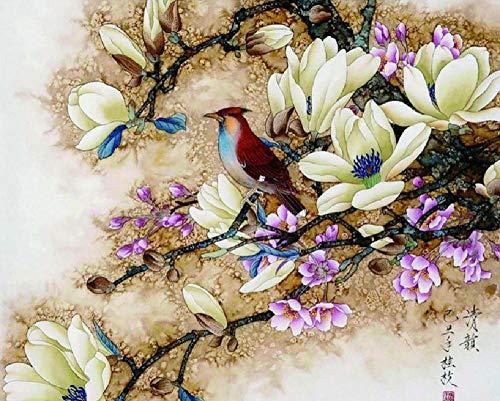 Digitale olieverfschilderij om zelf te maken vogel bloem cadeau decoratie voor thuis schilderkunst hanger canvas zonder frame, moderne kunst 40 x 50 cm voor kinderen studenten beginners