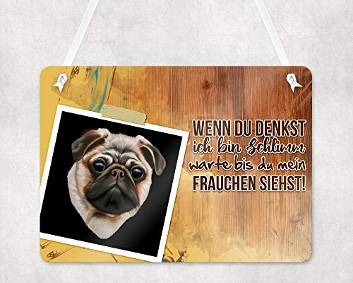 Warnschilder für Hunde, Personalisierte Schilder für Hunde, UV-geschützte Eingangsschilder, Wetterfest, Größe 20x28cm, wird mit einem Seil zum Aufhängen geliefert, Mops Hund