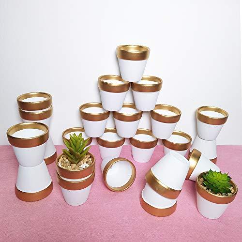 24 Pcs 2.5' Mini Clay Pots Small Terracotta Pots Pottery Planters Cactus Flower Pot Succulent Nursery Pots - Great for Plants, Crafts, Wedding Favors Baby Shower (Matte White Bisque) (Set of 24)
