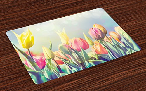 Ambesonne Pastel Place Mats Set of 4, Tulips Flower Bed in Park Serene Landscape Happiness Fresh Spring Environment Image, Washable Fabric Placemats for Dining Room Kitchen Table Decor, Blue Yellow