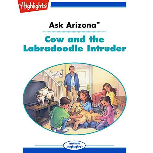 Ask Arizona: Cow and the Labradoodle Intruder copertina